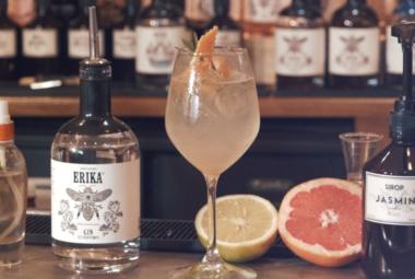 Geek du Gin Erika Spirit